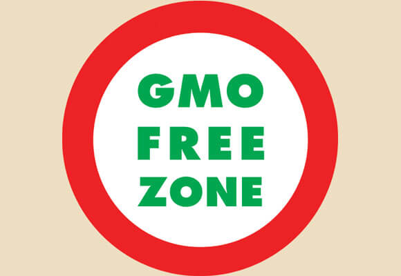 Non Gmo Foods How To Avoid Gmos For Real