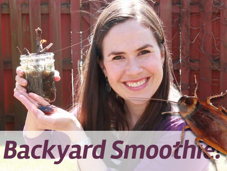 Backyard Smoothie recipe