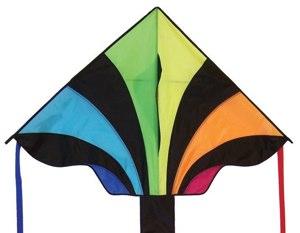 A Kite!