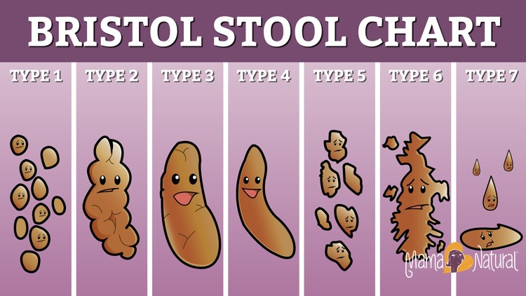 Bristol Stool Chart. Learn what your poop says about you at http://www.MamaNatural.com