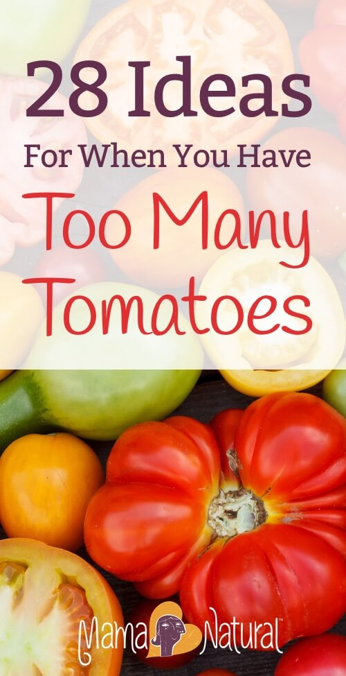 whatto do with fresh tomatoes from the garden