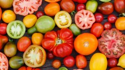 28 Things to Do With Too Many Tomatoes - tips by Mama Natural