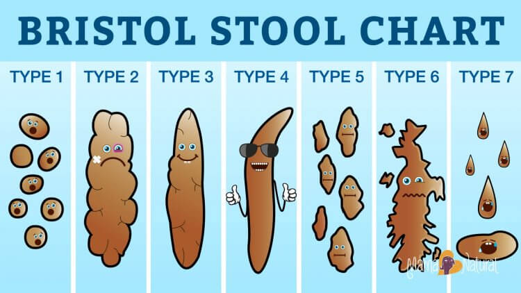 Poop Chart What Your Poop Says About Your Health Mama Natural