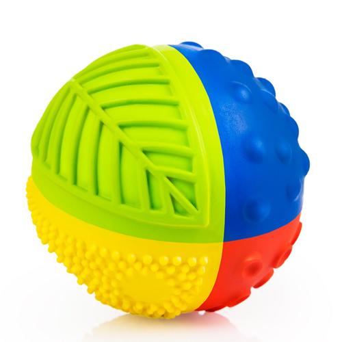 CaaOcho Sensory Ball