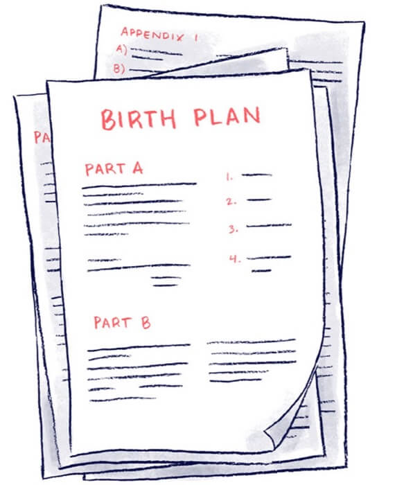 the mama natural week by week guide to pregnancy  u0026 childbirth