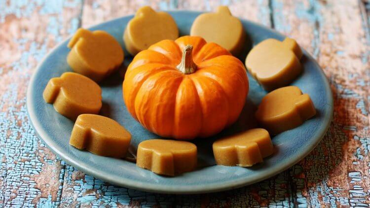 Paleo Pumpkin Dessert Bites (Dairy, Nut & Egg Free) Gelatin treat