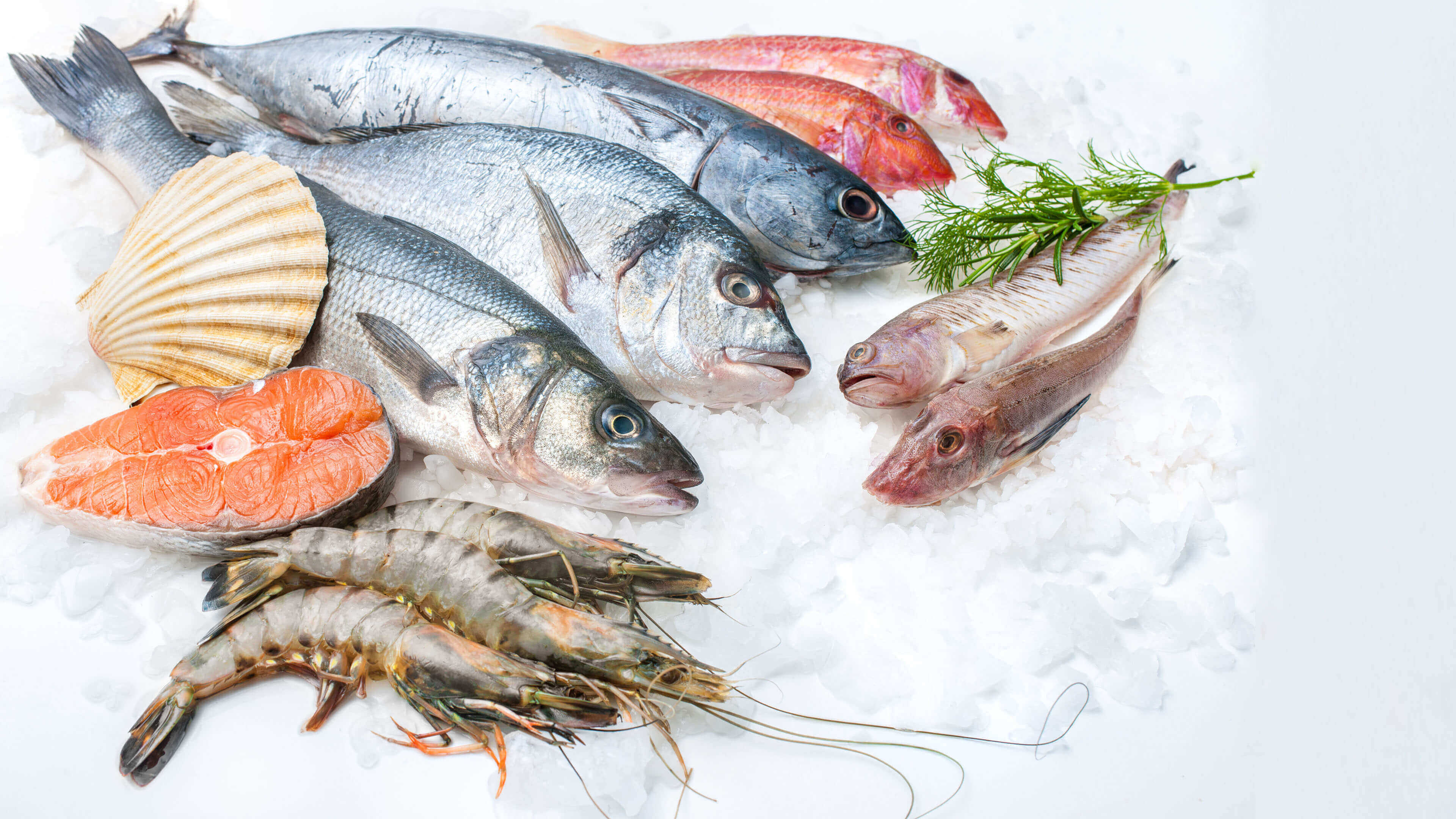 Safe Seafood While Pregnant: Good and Bad Fish Options
