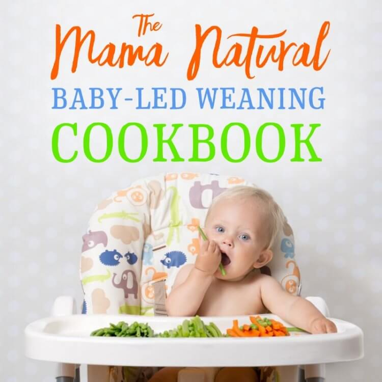The Mama Natural Baby Led Weaning book by Genevieve Howland cover