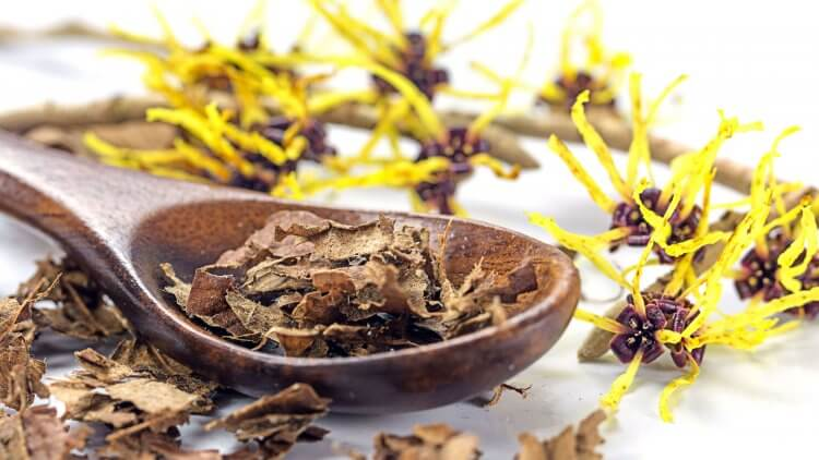 Got a pimple? Hemorrhoids? Eczema? Dandruff? Ever considered putting witch hazel on it? You'd be surprised at all of the things that this inexpensive, one-ingredient remedy can do. Here, we'll explain what it is and what you can do with it.