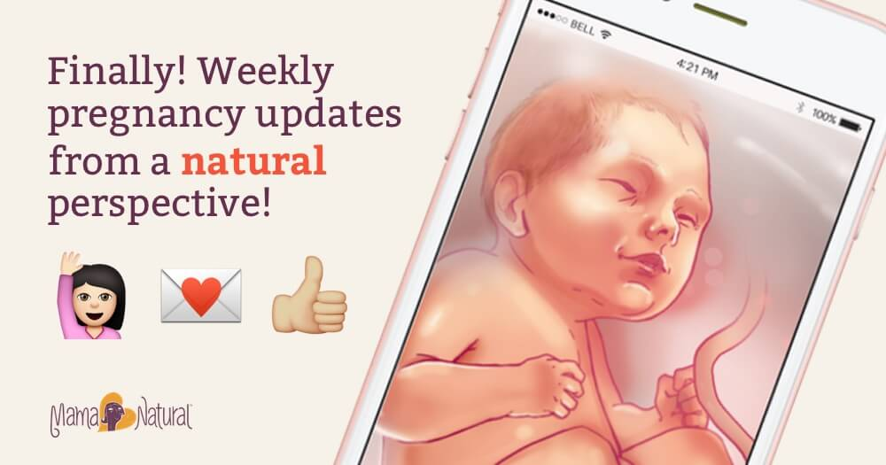 Finally, Weekly pregnancy updates from a natural perspective